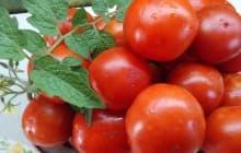 Валентина томат: описание, выращивание и уход