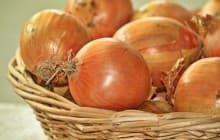 Как хранить урожай лука: советы и практические рекомендации