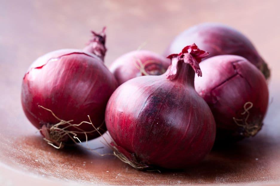 Красный репчатый лук полезные свойства