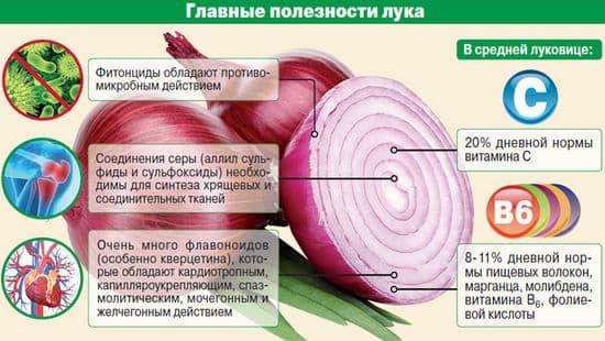 для чего полезен лук для женщин