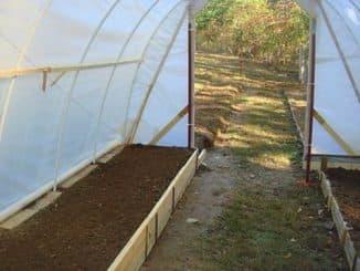 подготовка почвы под помидоры осенью в теплице