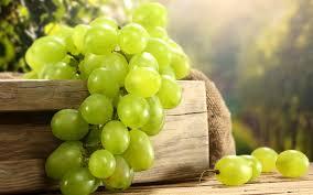 виноград белый (раздел)