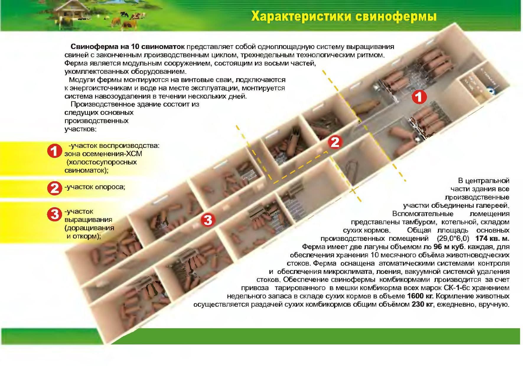Постройка дома из ракушняка пошагово с фото